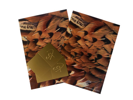 Quality Pheasant Plumage Themed Gift Wrap Set 2 sheets and 2 tags