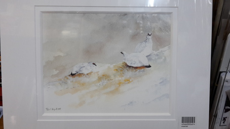 Ptarmigan in the Snow Print